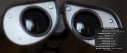 5D Mark II 100 iso - Wall-E.png
