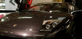 Shooting d'un pur sang Lamborghini